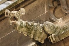 3714568-the-gargoyles-of-notre-dame-cathedral-paris