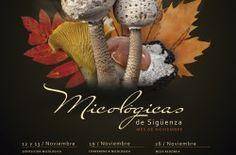 I Jornadas Micológicas De Sigüenza - http://www.mipuntomap.com/city/guadalajara-spain/event/i-jornadas-micologicas-de-siguenza/