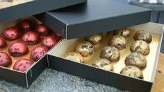 Jespers opskrifter på fyldte chokolader, som han lavede i Den store Bagedyst. En med kirsebær og en med karamel og bacon. Forkæl nogen du holder af.
