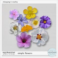 Simply Flowers CU Pack by #eqrAveziur $3.99 Perfect for summer or spring kits. #theStudio #digiscrap #CU