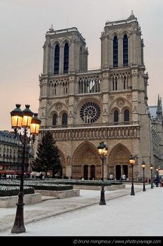 Visit the famous Notre Dame` in France