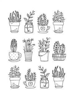 Flowers in pots painted black line on a white background. Vector drawing lines – Sude Elmas Flowers in pots painted black line on a white background. Vector drawing lines Flowers in pots painted black line on a white background. Vector drawing lines Botanical Line Drawing, Botanical Drawings, Doodle Drawings, Doodle Art, Plant Drawing, Drawing Drawing, Drawing Flowers, Drawing Things, Cactus Drawing