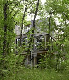 Awesome 81 Best Things About Forest House You Want To Know https://modernhousemagz.com/81-best-things-about-forest-house-you-want-to-know/