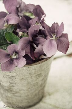 Such a soft lilac tones beautifully with the grey of the container.
