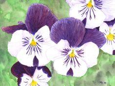 """Aquarelle """"Pensées blanches et violettes"""" - par Savousepate - http://www.alittlemarket.com/peintures/fr_aquarelle_pensees_blanches_et_violettes_non_encadree_-8963421.html"""