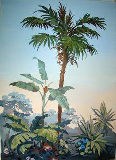 palmier zuber