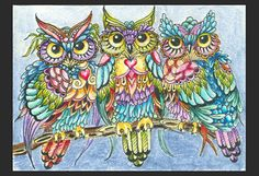 Owls - Zentangle - Doodles (By Norma Burnell 2012)