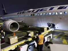 A former flight attendant is suing WestJet, alleging the airline didn't do enough to investigate her claim that a pilot sexually assaulted her during a layover in Hawaii.