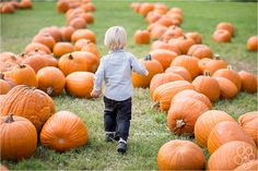 Images of children in a pumpkin patch. How to get the best pumpkin patch images. Pumpkin Patch Austin, Pumpkin Patch Kids, Pumpkin Farm, Baby In Pumpkin, Pumpkin Patches, Pumpkin Patch Pictures, Pumpkin Photos, Fall Family Pictures, Fall Photos