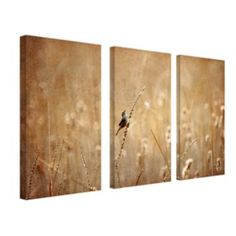 Side office option - Large Scale with warm colors to soften long, white walls. 3-pc. ''Bird'' Wall Art Set