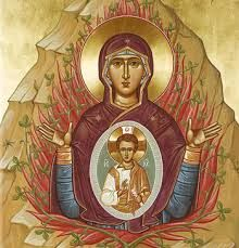 Ancient Faith Store offers an array of quality Orthodox Christian books, icons, jewelry, music, and gifts. Visit our store and discover the richness and beauty of Orthodox Christianity. Religious Images, Religious Icons, Religious Art, Byzantine Icons, Byzantine Art, Blessed Mother Mary, Blessed Virgin Mary, Burning Bush, Virgin Mary