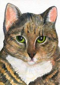 Cat Watercolor Painting original 5 x 7. Small cat art, original watercolor painting of tabby cat, kitty cat artwork This is my very own cat, Lucky. My poodle dog, Jett, found her as a abandoned kitten and we rescued her. She is very sweet and shy even after 15 years. It was 5 years before she let me pet her belly. Now, she wants to be petted all the time - especially her belly. An original watercolor painting on watercolor paper. 5 x 7 Signed. Sharon Foster (c) 2015 Tabby Cat Watercolors...