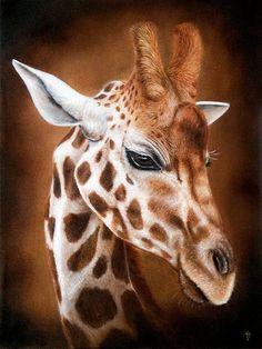 Diamond Painting Giraffe DIY Full Round Drill Diamond Embroidery Cross Stitch Mosaic Manual Hobby Rhinestone Home Decor Gift Giraffe Decor, Giraffe Art, Cute Giraffe, Giraffe Drawing, Giraffe Painting, Animals And Pets, Baby Animals, Cute Animals, Wild Animals