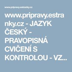 www.pripravy.estranky.cz - JAZYK ČESKÝ - PRAVOPISNÁ CVIČENÍ S KONTROLOU - VZORY