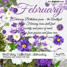 Birthday Collection February by cheyOkota @Plaindigitalwrapper.com