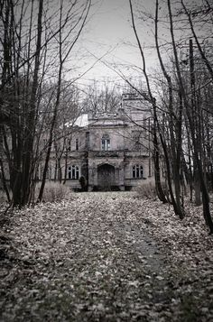 Abandoned mansion, this could make for a good movie!