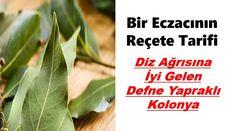 Eczacı bir Beyin Reçete Tarifi Defne Yaprağı ve Kolonya Herbs, Herb, Medicinal Plants