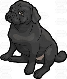 A cute little black Pug :  A small dog with wrinkled black fur nose and eyes sitting on the floor while staring above  The post A cute little black Pug appeared first on VectorToons.com.