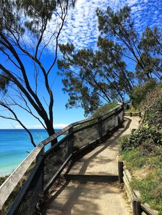 In this TOP 5 things to do in Byron Bay I am covering THE places to go and be when visiting The Northern Rivers of NSW. Cool Places To Visit, Places To Travel, Places To Go, Australia Travel Guide, Overseas Travel, Europe Destinations, Byron Bay, Where To Go, Adventure Travel