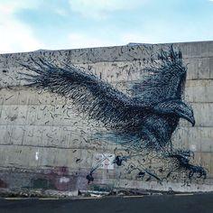 #DALeast, Dunedin, New Zealand