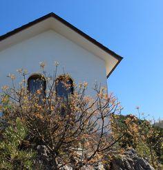 Villa degli Armeni, villa for rent in the Sabina, near Rome, Lazio, Italy  .................  Villa degli Armeni: private villa rental Italy