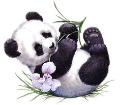 Printable - Panda - Ruth Morehead