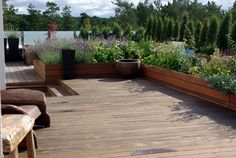 Love this clean roof top garden, getting ideas to fix up my deck.