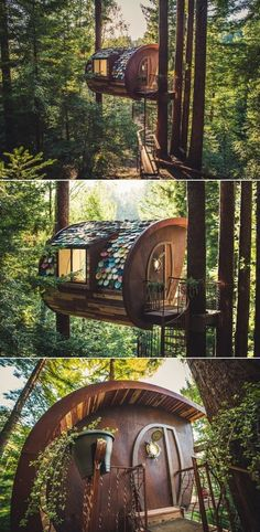 O2 Treehouse aka O2T has custom built a number of unique structures in recent years, including the newest Blackbird Treehouse in Seattle. The Glazed Perch located in Occidental, California is one of their prized creations. It features ceramic plate shingled roof that not only provides protection from elements but also ensures a mysterious look. Another World, Ceramic Plates, Occidental California, Tree Branches, Mother Nature, Woodworking, Treehouses, Blackbird, Ceramics