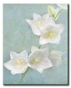 MEl_440_Aqua Floral IV / Cuadro Flores de Agua