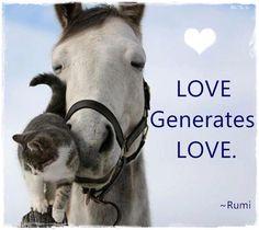 LOVE generates LOVE