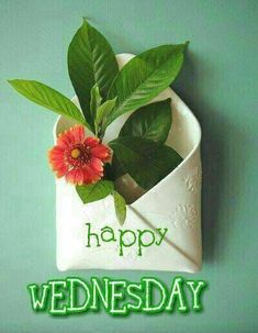 Happy Wednesday, Happy Day, Just Saying Hi, Good Morning, Bob, Sketches, Friends, Flowers, Buen Dia