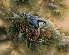December Dawn-Nuthatch by Rosemary Millette : Wild Wings Watercolor Bird, Watercolor Paintings, Tattoo Watercolor, Original Paintings, Images Vintage, Bird Wings, Mundo Animal, Bird Pictures, Wildlife Art