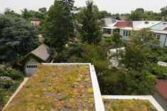 Terrasse | #greenroofs