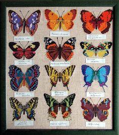 Gallery.ru / Фото #98 - 371 - elypetrova...free cross stitch patterns!