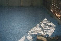 """""""DROP OUT"""" PERLITE and REGULAR PERLITE  FOR HORSE CORRALS AND STALLS"""