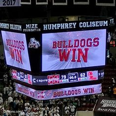 Wrap It in Maroon and White (48/365) #hailstate #dailyphoto #365cm #ncaam #basketball #ThisIsOurState