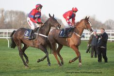 Sprinter Sacre and Sire de Grugy, a pair of Champion Chasers  Image by www.racehorsephotos.co.uk