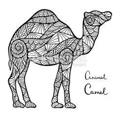Vector Art : Stylized vector camel, zentangle isolated on white background. Zentangle, Mandala Art, Camel Tattoo, Camel Craft, Tier Doodles, Animal Body Parts, Animal Doodles, Drawing Sketches, Drawings