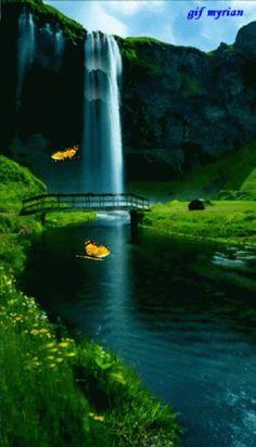Just another WordPress.com site Beautiful Nature Wallpaper, Beautiful Gif, Beautiful Landscapes, Beautiful Places, Amazing Gifs, Amazing Nature, Nature Gif, Nature Photos, Gif Bonito