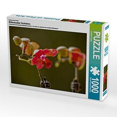 Ein Motiv aus dem Kalender Blütenzauber Orchideen 1000 Te... https://www.amazon.de/dp/B01LNQ8KIS/ref=cm_sw_r_pi_dp_x_jXP3xbBEQMQFZ