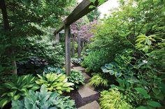 My Garden: Toronto Shade Garden Garden Design Calimesa, CA