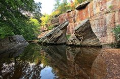 Devil's Backbone at Bell Smith Springs in Shawnee National Forest , Illinois.  Wow.. it's a walk to see this, but so worth it.  I'm going again some day