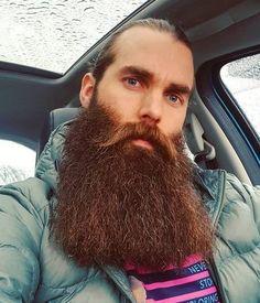 thebeardapostle.com