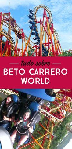 Tudo sobre Beto Carrero World! Principais atrações do parque, montanha russa INSANA e Big Tower, valor do ingresso, o que levar e como chegar