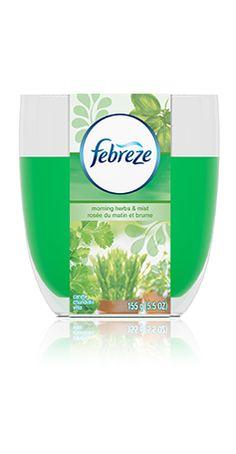 Febreze Candles Morning Herbs & Mist