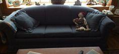 Queen Sleeper Sofa for Sale - $550