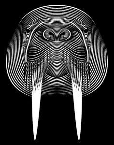Walrus, Patrick Seymour