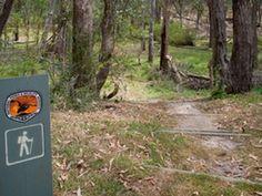 Moolarben picnic area Picnic Area, Country, Outdoor Decor, Rural Area, Country Music