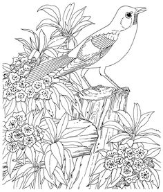 Free coloring page «coloring-for-adult-1». Beautiful little bird in nature, consisting of pretty flowers. Placed on the tree stump.