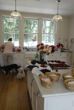 Kitchen - WINDOWS - sink